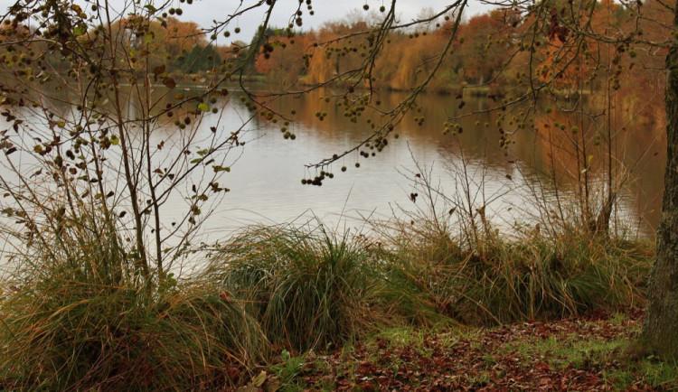 Sedmatřicetiletý muž utonul v rybníce, příčina není známa