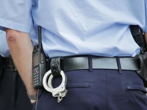 Zloději byli dopadeni zanedlouho po vloupání. Předcházela tomu automobilová honička s policisty