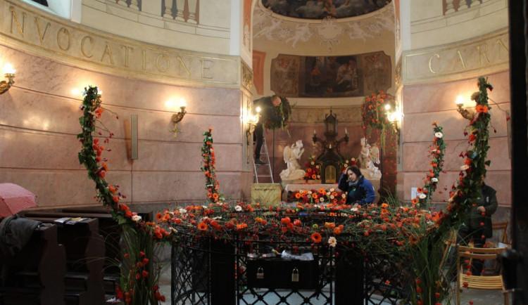FOTOGALERIE: Olomoucké památky rozkvetly květinami, podívejte se na tu krásu