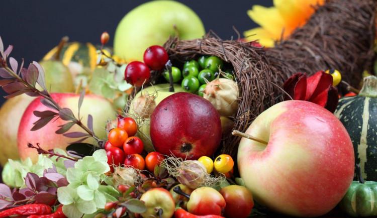 Podzimní Floru navštívilo přes 25 tisíc lidí