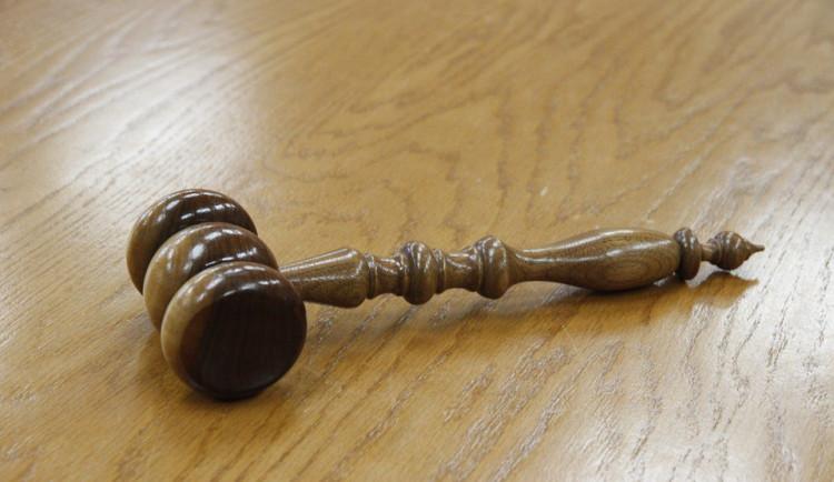 Olomoucký soud se bude zabývat vraždou dívky ubodané bývalým přítelem v brněnském arboretu
