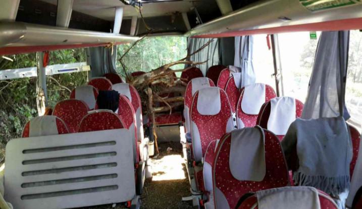 Včerejší nehodu autobusu na D35 policisté vyšetřují jako podezření z těžkého ublížení na zdraví