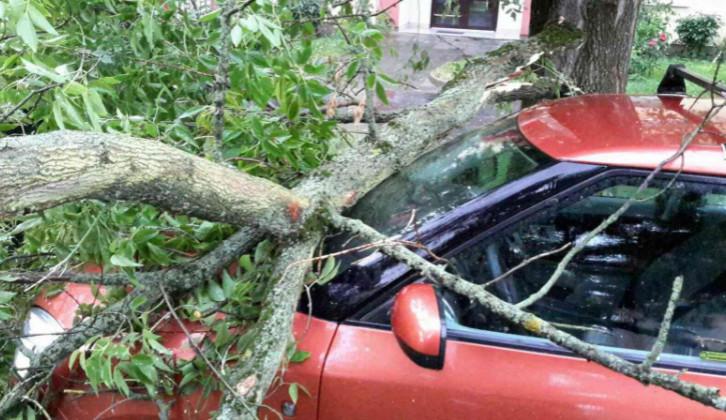 Noční bouřky zaměstnaly hasiče, nejčastěji vyjížděli k popadaným stromům