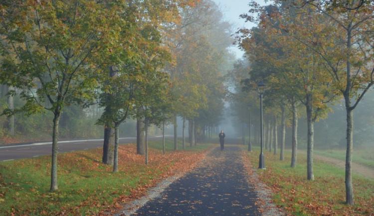 Přelom září a října bude chladný. V noci mohou teploty klesnout jen na několik stupňů nad nulou