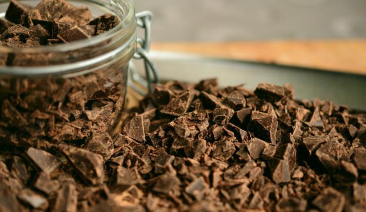 KULTURNÍ PŘEHLED: Vytvořte si vlastní čokoládu anebo pomozte s počítáním zvířat v zoo