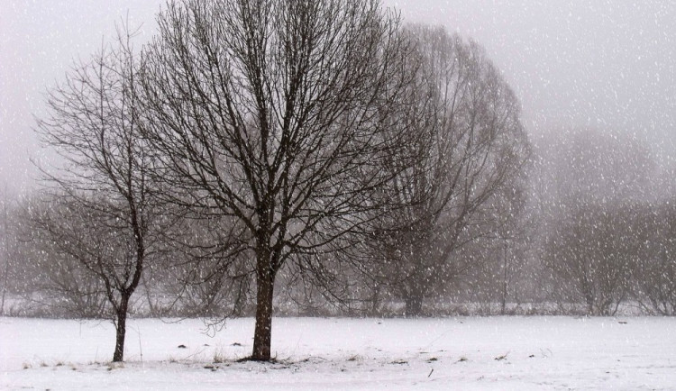 POČASÍ NA ÚTERÝ: Občasné sněžení a teploty nad nulou
