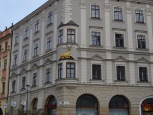 Dům u Zlatého jelena v Olomouci se rozsvítí zlatě, upozorní tak na problematiku dětské onkologie