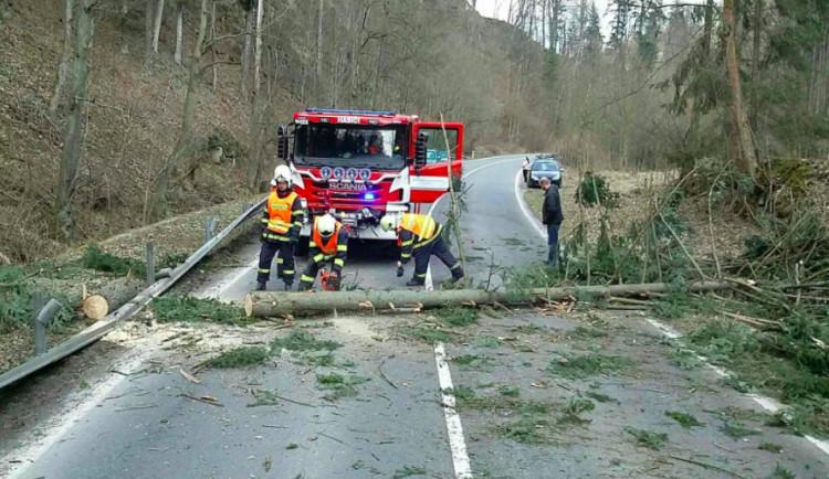 Silný vítr opět zaměstnává hasiče, většinou jde o spadané stromy