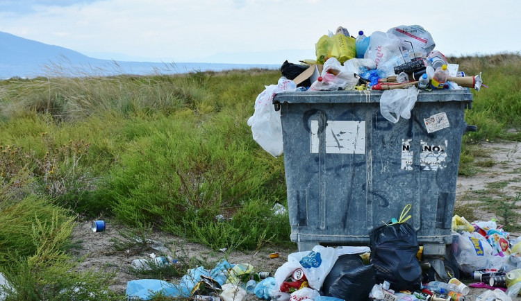 Dnes je Den Země, letos je zaměřen na boj proti plastovým odpadům