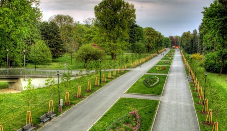 Lidé hlasují o nejkrásnější Alej roku. Olomouc zastupuje Rudolfova alej, nominovat ale můžete i další