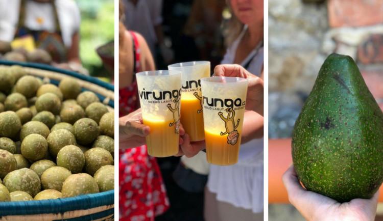 FOTOGALERIE: Jackfruit, baby banány nebo drink z cukrové třtiny. Olomoučané v neděli ochutnávali Afriku