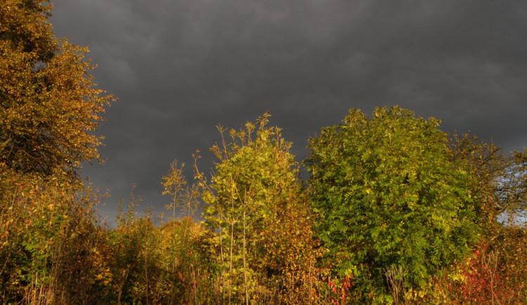 POČASÍ NA ČTVRTEK: Zatažená obloha a déšť s mírným větrem