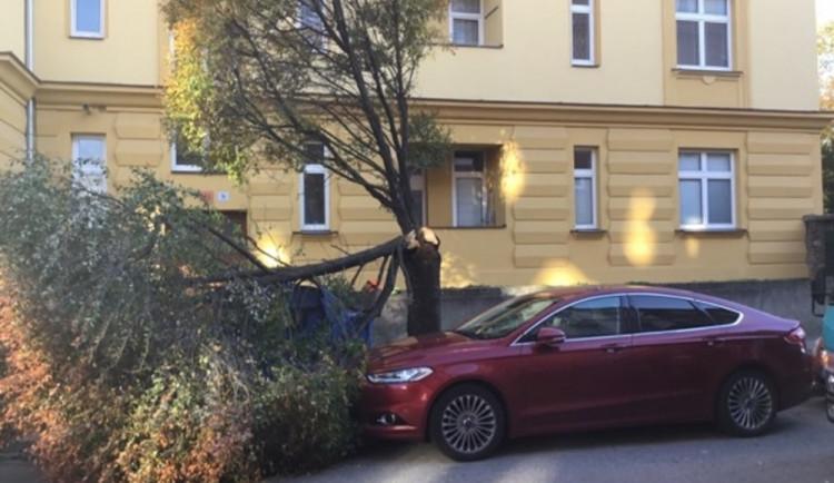 FOTO: Včerejší silný vítr zaměstnával policisty, vyjížděli k popadaným stromům i reklamním tabulí