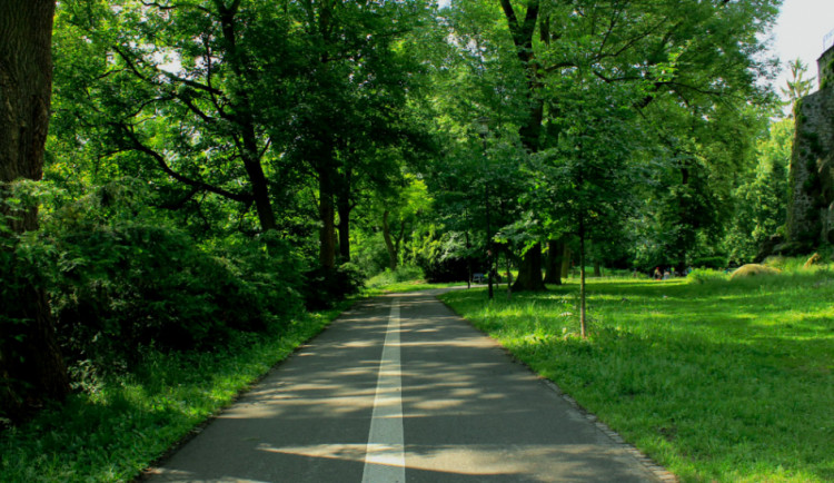 Vstup do olomouckých parků je na vlastní nebezpečí, po silném větru tam hrozí pády stromů