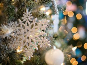Podívejte se, kde všude proběhne rozsvícení vánočního stromu. Čekají vás koncerty i strom splněných přání