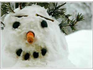 V areálu Letního kina se dnes budou celé odpoledne stavět sněhuláci, připraveno je i občerstvení
