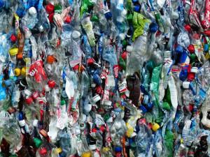 Zálohy na PET lahve ekologii nepomůžou a navíc zdraží zboží, tvrdí předseda družstva CBA