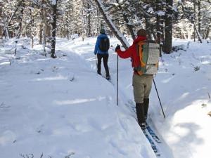 Lyžaři i běžkaři si užívali o víkendu v Jeseníkách. Lyžařské areály byly plné i díky jarním prázdninám