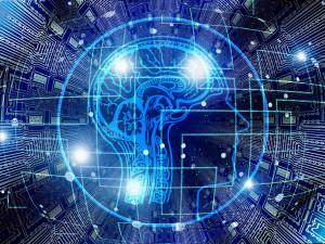 Jak se zbavit stresu a porozumět neuronům? V rámci Týdne mozku odpoví Pevnost poznání