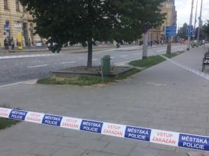 Roj včel v centru Olomouce zaměstnal hasiče i včelaře