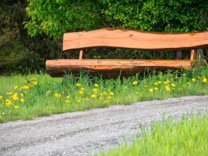 Zloděj ukradl z lesního odpočívadla dřevěnou lavičku. Do vězení může jít až na dva roky