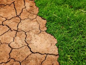 Podle odborníka se kvůli oteplování výrazně prodlouží vegetační období. Čekají nás také vichřice a extrémní přeháňky
