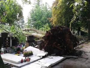 Bouřkou poničený hřbitov v Prostějově byl opět otevřen