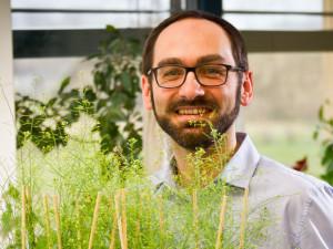 Funkci důležitého genu u rostlin rozluštili olomoučtí vědci