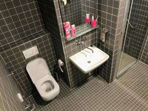 Některé pokoje oddělení šestinedělí ve Fakultní nemocnici mají nové toalety a koupelny