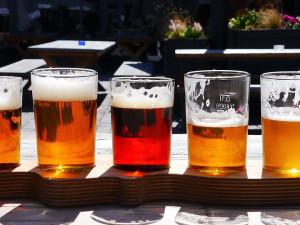VÍKEND PODLE DRBNY: Ochutnejte lokální piva a zasaďte strom pro dobrou věc