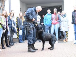 FOTO: Policie pořádalav centru Olomouce Kariérní den. Lákáhlavně na náborový příspěvek
