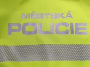 Strážníci při kontrolní činnosti zadrželi hledaného mladíka. Byl předán policii