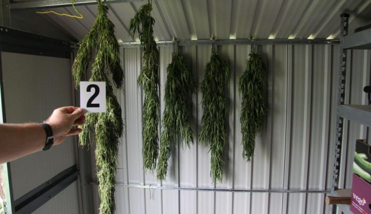 Policie zabavila konopí dvaceti pěstitelům. Jednoho z nich navíc obvinila z výroby pervitinu