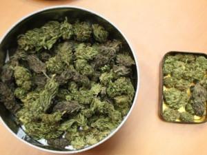 FOTO: Marihuana, hašiš i pervitin. Olomoučtí kriminalisté odhalili za víkend tři dealery drog