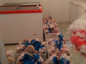 Na Přerovsku bylo odhaleno více než čtvrt tuny drůbežího masa bez dokladů