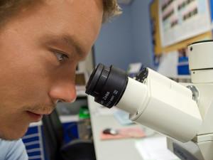 Olomoucká Univerzita Palackého se zapojí do Týdne vědy a techniky. Ten bude bohatý na zážitky