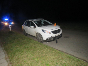 Řidiči vběhlo do cesty divoké prase, po srážce uhynulo