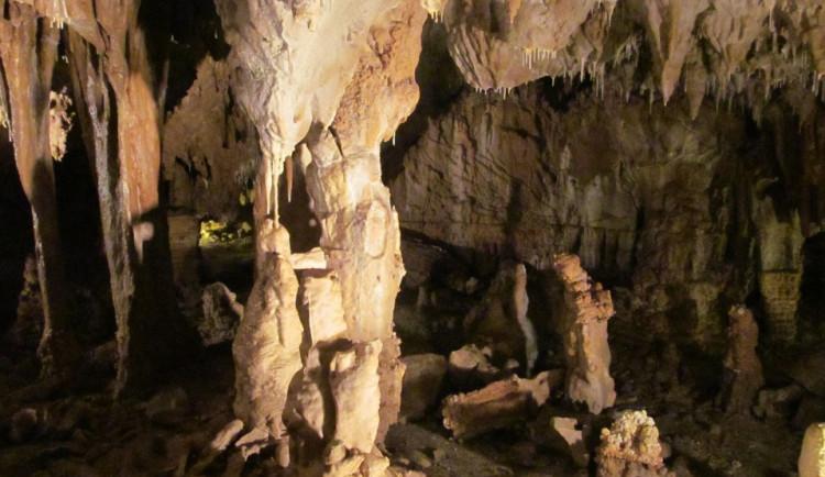 Amatérští jeskyňáři v Javoříčském krasu objevili kostru medvíděte. Přesné stáří určí radiouhlíková metoda