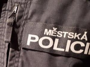Řidič na Smetanově ulici srazil chodce