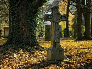 Za návštěvu hřbitova zaplatili šedesát tisíc. Zloděj rozbil a vykradl tři auta
