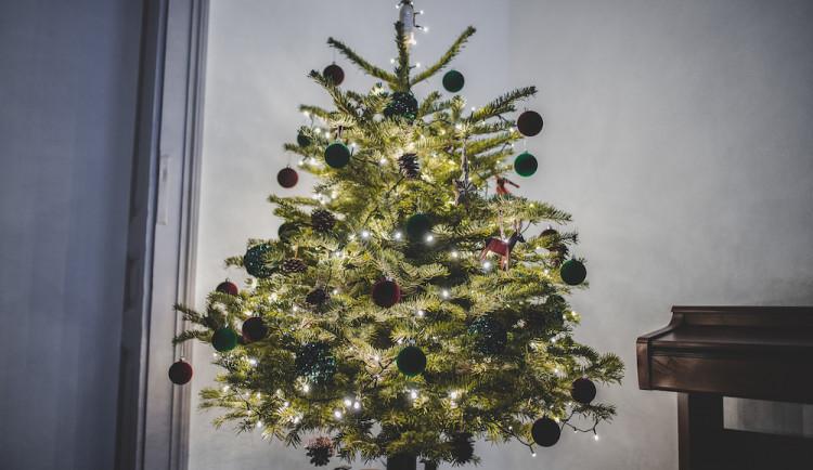 SOUTĚŽ: Rozhodněte o nejhezčím vánočním stromku od našich čtenářů