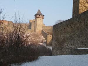Hrad Helfštýn navštívily při novoročním výstupu tisíce lidí
