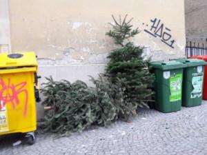 Dnes začíná svoz vánočních stromků. Technické služby posílí počet vozů