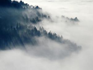 POČASÍ NA ČTVRTEK: Přes den nás čeká zataženo, mlhavo a teploty mezi pěti až devíti stupni