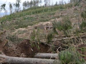 Výše škod na následky živlů se zvýšily desítky procent. Mezi nejpostiženější patří Olomoucký kraj