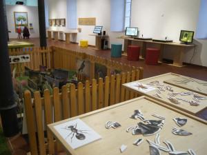 FOTO: V šumperském Muzejíčku otevřela své brány nová výstava Herna plná přírody