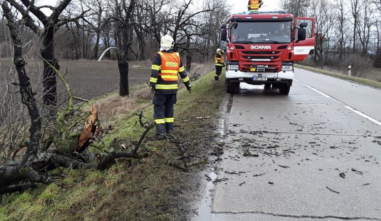FOTO: Silný vítr zaměstnává hasiče v celém kraji, odstraňují popadané stromy, odčerpávají přebytečnou vodu