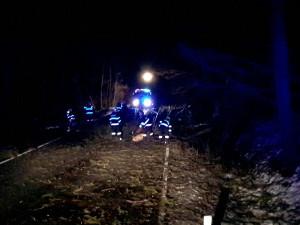 AKTUÁLNĚ: Hasiči nejvíce vyjíždějí k popadaným stromům, největší vichřice se na Olomoucko teprve žene