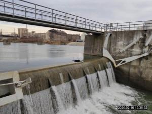 Seniorce utekl ze zahrady vlčák, rybářská stráž ho našla utopeného v řece