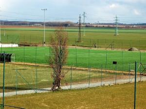 V areálu stadionu v Holici proběhne v dubnu dobročinná výsadba stromů